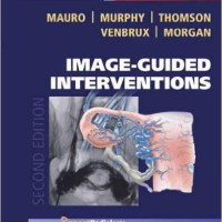 harga Image-guided Interventions: Expert Radiology Series 2ed Tokopedia.com