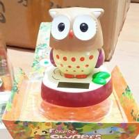 Jual kado ultah valday pajangan dashboard owl unik lucu keren Murah