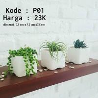 pot keramik - pot kaktus sukulen - pot unik - pot tanaman