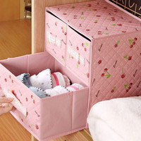 kotak laci tempat penyimpanan celana dalam bra rak panties organizer