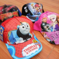 Topi Pet Karakter Frozen Thomas Boboy Superhero