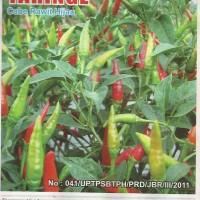 Tanaman Kebun Taman Bibit Sayur Cabe Rawit Hijau