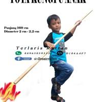 Toya Kungfu Anak