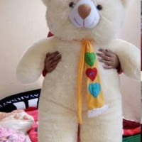 Boneka Jumbo Bear Syal