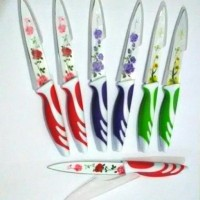 Jual Pisau Dapur Keramik / Kitchen Set Knife Motif Purple Rose Buah Sayur Murah