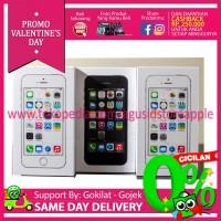Ready Bnib Iphone 5s 16gb Garansi 1 Tahun Apple