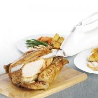 Harga kenwood kn 450 electric knife pisau elektrik pemotong roti | antitipu.com
