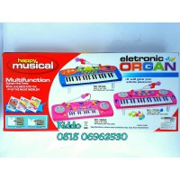 Electronic Organ - Multi function Berkualitas
