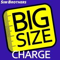 Big Size Charge Bata Cheetah Krushers Osha