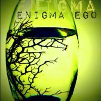 Novel Misteri Dewasa - Enigma Ego