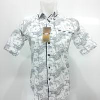 Kemeja Batik Pria Slim Fit / Baju Batik Pekalongan / Batik Indonesia