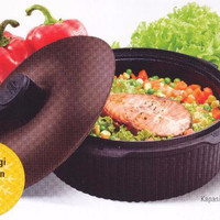 Micro Wave Cooker
