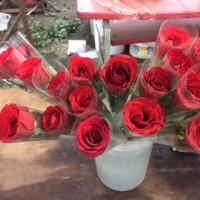 Setangkai Bunga Mawar Asli