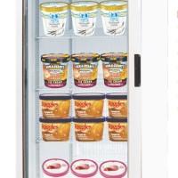 Freezer Display Untuk Memajang Ice Cream Premium (Standing)