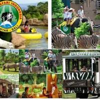 Tiket Taman Bermain Taman Safari Bali