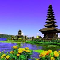One Day Bali Tour Bedugul + Tanah Lot 1 Orang - Paket Tur Murah