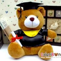 Boneka Teddy Bear Wisuda Medium ( BT - 332733 )