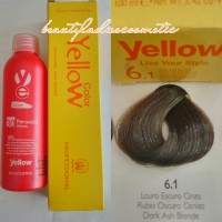 Yellow Hair Color 6.1 Dark Ash Blonde 100 ML1
