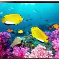 tv led 22 Aiwa 22MBOX - TV pengawas cctv ( pengintai cctv)