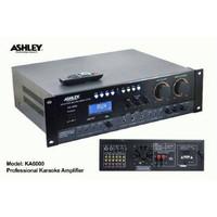 power amplifier Ashley KA-6000 (650 watt