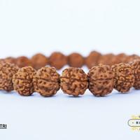 Gelang Genitri Jenitri Rudraksha Kualitas Super