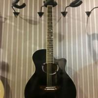Gitar Akustik APX Blackgloss Custom kualitas bagus