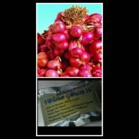 Bibit Bawang Merah Tuk Tuk 50 Butir