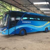 bis pariwisata tujuan dalam kota
