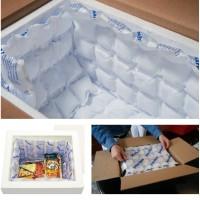 ICE PACK - Ice gel lembaran - murah & cocok untuk industri rumahan