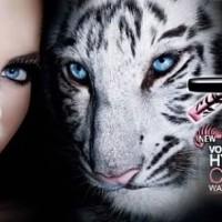 Maybelline Volum' Express Hypercurl Cats Eyes Waterproof Mascara