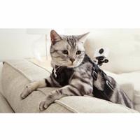Xiaomi Yi Cat Dog Harness Xiaomi Yi GoPro Kogan Sports Action Camera L