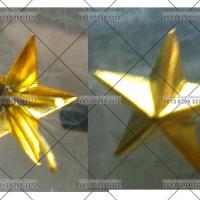 pin garuda dan bintang, sepuh emas untuk kerah