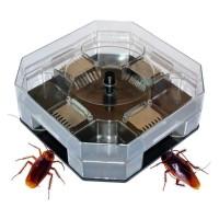 Jual Cockroach Trap - Perangkap Kecoa Kecoak Pembasmi Serangga Hama - Large Murah