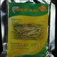 Probiotik Budidaya Ikan Patin, lele, nila, dll Probac P