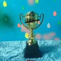 piala / trophy / tropi champion gold tatakan ceper murah bagus