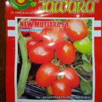 Jual Benih Tomat NEW MUTIARA F1 Jawara Murah