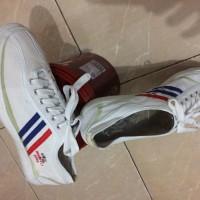 Sepatu olahraga Capung merk Dragon Fly