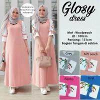 Glosy Dress