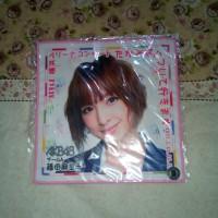 Oshi Towel Mariko AKB48 Yokohama Arena Concert