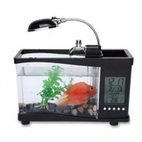 harga Aquarium Meja Dengan Lampu Dan Display Tokopedia.com