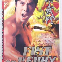 Fist of Fury 1995 (DONNY YEN