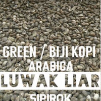 Jual Green Bean/ Biji Kopi Luwak Liar Arabica Premium Murah
