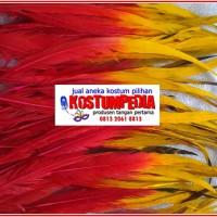 Merah Kuning | Bulu Hias Kostum Tari Dance Pentas Seni Karnaval Parad