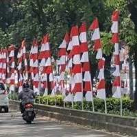 Bendera umbul-umbul merah putih 8 mata model zigzag/gergaji +- 3 meter