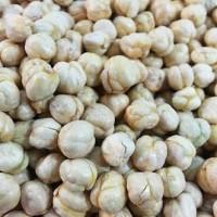 Jual Kacang Arab Murah