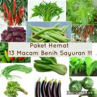 Paket Hemat Benih 13 Jenis Sayuran Plus Bonuss