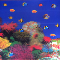 3 Dimensi Cover Aquarium/Background Aquarium/Gambar Belakang Aquarium