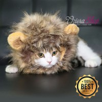 Baju Kucing Anjing Model Wig / Rambut Singa