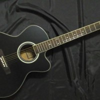 Gitar Akustik Martin & Co Black Dove