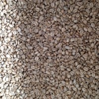 Jual Kopi Arabika Kintamani-Green Beans Murah